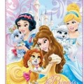 Hercegnők Disney polár takaró állatos 120x140cm