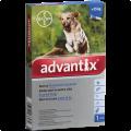 Advantix spot-on cseppek kutyának 25+ kg 1x4ml